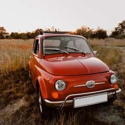 Fiat Nuova 500 L Frontansicht im Sonnenuntergang